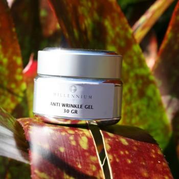 Anti-wrinkle gel