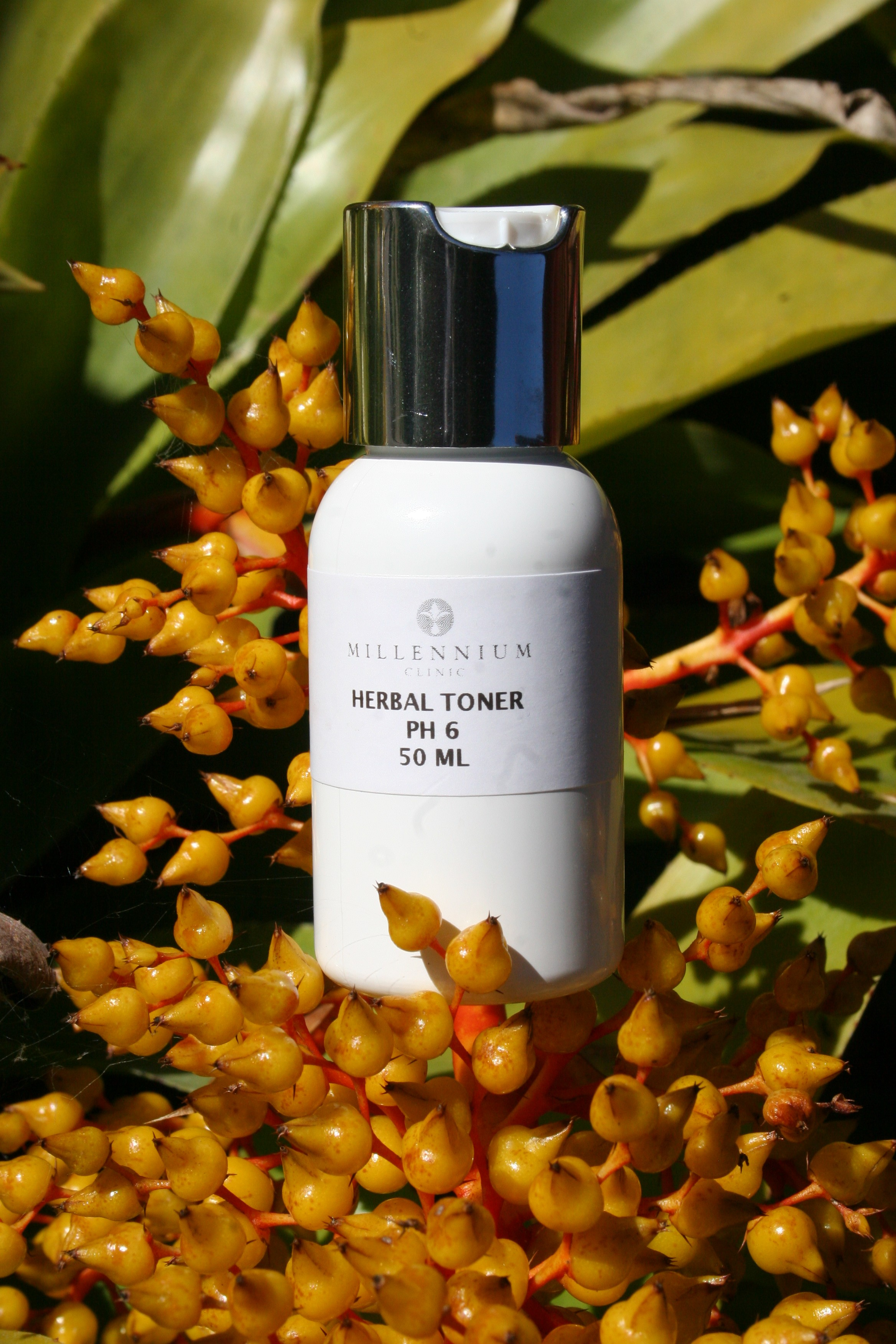 Herbal Toner & Astringent - Face Lotion