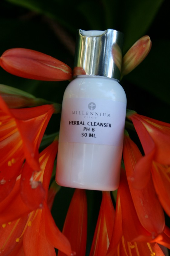Cleanser - Normal to Dry skin